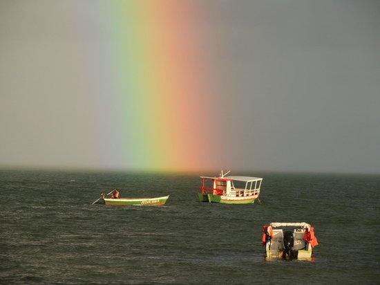 MARAGOGI- Confira a previsão do tempo para esta sexta ...
